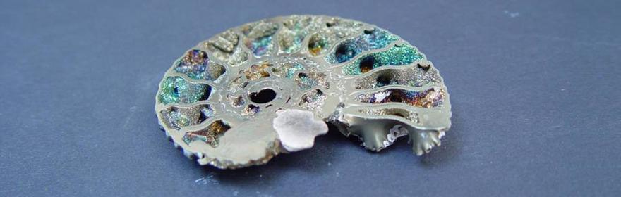 Rainbow Pyritised Ammonite