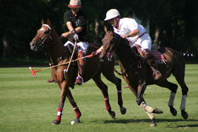 Polospiel by Dee.lite at the German language Wikipedia