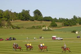 Polo at Cowdray Park by Mark Percy