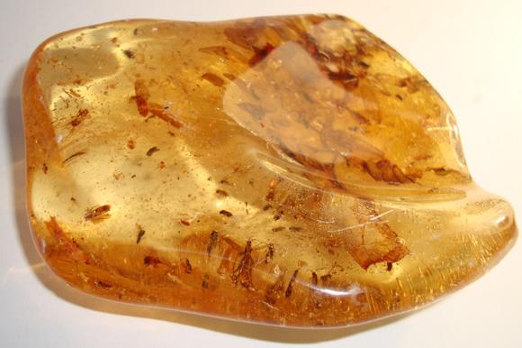 Amber - Columbian Copal