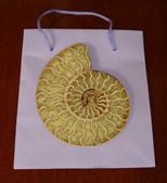 Polished Split Ammonite - gift
