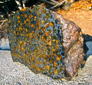 Brahin meteorite, pallasite. 3 kg end piece, cut and polished by Steve Jurvetson