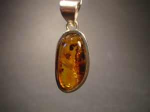 Amber - Pendant with Inclusions