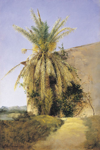 Palm by Antal Ligeti (1823 - 1890)