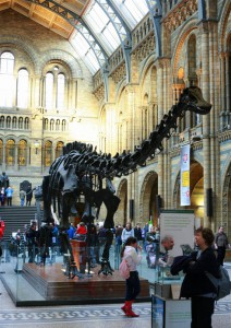 The Natural History Museum London photo by Cezary P pl.wikipedia