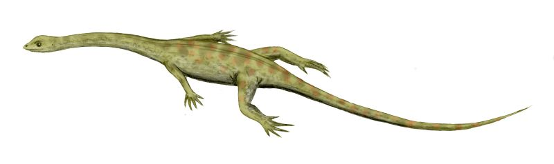 Hyphalosaurus lingyuanensis, an aquatic reptile from the Early Cretaceous of China, pencil drawing (July 19, 2007) Arthur Weasley