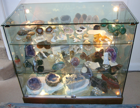 Display Cabinet of Fossils and Minerals