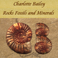 Charlotte Bailey Rocks Fossils and Minerals