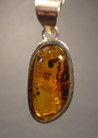 Pendant 0095: Amber with Inclusions