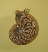 Pendant 0111: Whole Ammonite
