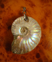 Pendant 0115: Pearlised Ammonite