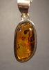 Amber Pendant with Inclusions